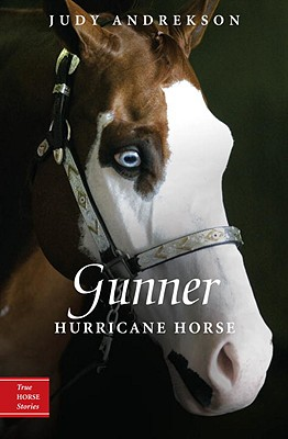 Gunner By Andrekson, Judy/ Parkins, David (ILT)
